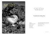 galena_nyc_ene07