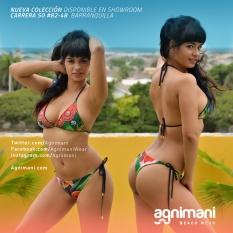 bikini_brasil_rojo